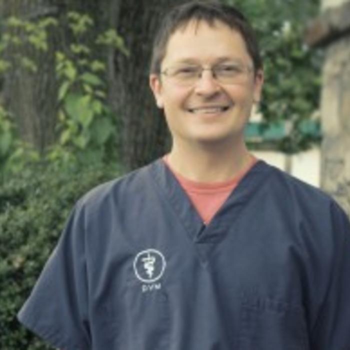 Justin Yesilonis DVM </br>Veterinarian Owner photo